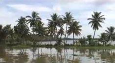 印度旅遊–印度喀拉拉邦風景區