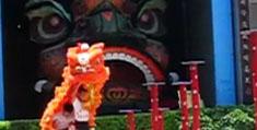 佛山旅遊 - 南海黃飛鴻獅藝武術館