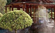 溫泉SPA旅遊 - 熱龍溫泉度假村